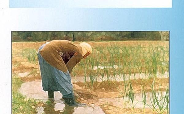 Anthropologie de l'irrigation : les oasis de Tiznit au Maroc par Toufik Ftaïta
