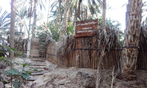 Jardin de la biodiversité